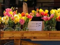 flower-cart-103466_640